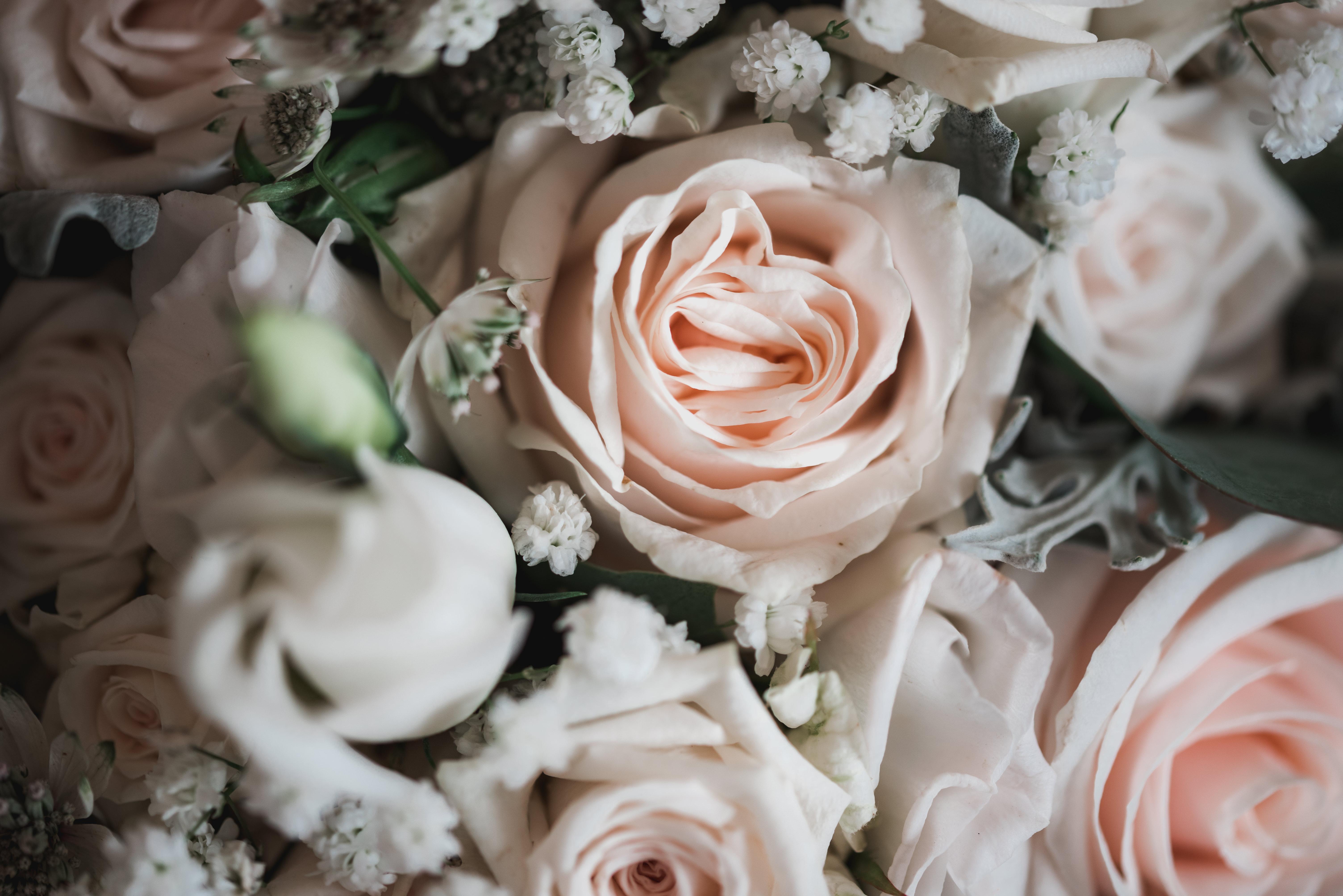 wedding_2020_097